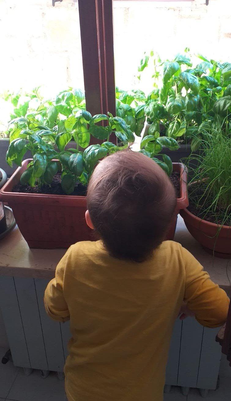 Bambino orto balcone - Movidarte